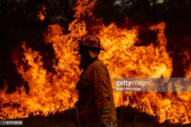 Member works on controlled back burns along Putty Road on November 14 2019 in Sydney Australia Crews are working hard to gain the upper hand after...