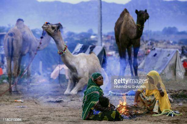 TOPSHOT Members of a camel trading family sit around a fire in the early morning next to the animals at the Pushkar Camel Fair in Pushkar in the...