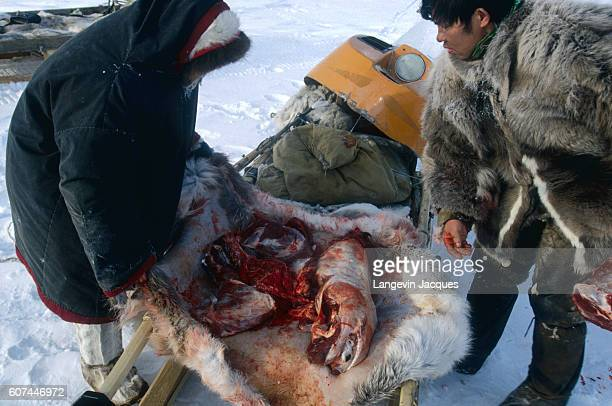 Members of a Dolgan hunting party inspect the meat cut from a reindeer carcass The Dolgans traditionally a nomadic people who live along the Taymyr...