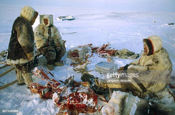 Members of a Dolgan hunting party rest after butchering a reindeer for transport on a sled The Dolgans traditionally a nomadic people who live along...