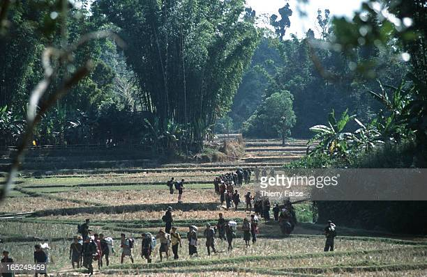 Members of a Free Burma Rangers expedition team on their way to find and bring relief to refugees hiding in the jungles