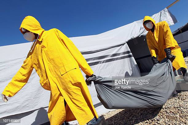 Members of a Haitian Ministry of Health body collection team remove a body from the International Red Cross cholera treatment facility on November 25...