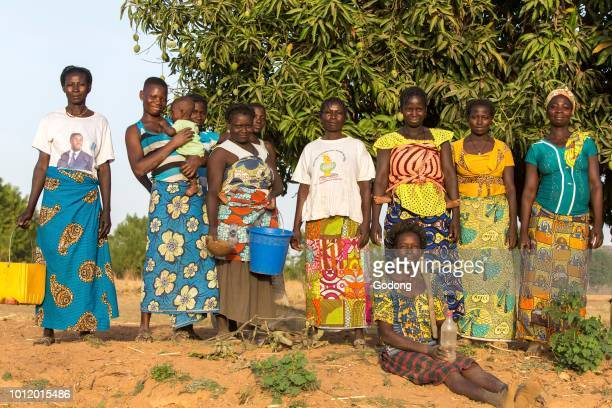 Members of a women's cooperative in a vegetable field in Karsome Togo