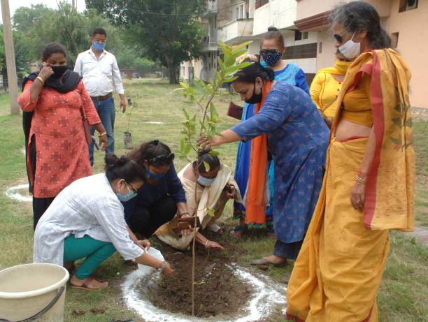 IND: Sapling Plantation Drives