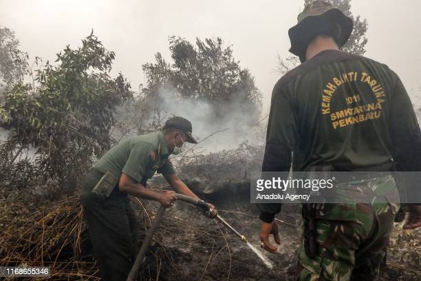 Members of Indonesian Army carry out works to extinguish the fire that broke out at a peatland in Rimbo Panjang Village Tambang District Kampar...