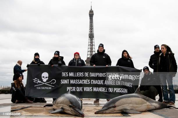 "Members of marine conservation organisation Sea Shepherd Conservation Society hold a banner reading ""Thousands of dolphins like this one are..."