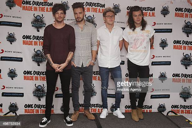 Members of One Direction Louis Tomlinson Liam Payne Niall Horan and Harry Styles pose for a photocall in Mexico City Mexico on November 25 2015
