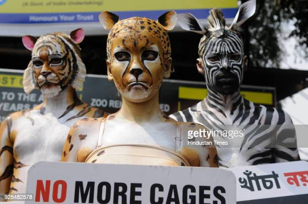 Members of People for the Ethical Treatment of Animals bodypaints themselves as Tiger Cheetah and Zebra and carrying placards proclaimed 'No More...