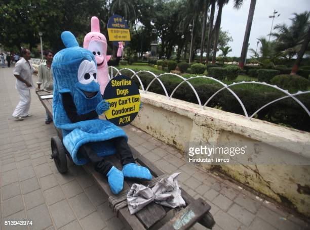 Members of People for the Ethical Treatment of Animals dressed as giant condoms hold placards at Girgaon Chowpatty in Mumbai on Monday to encourage...