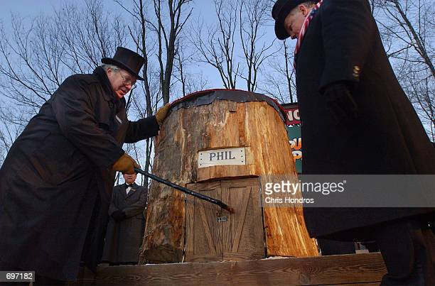 Members of Punxsutawneys Inner Circle tap on Punxsutawney Phils door as they entice him out February 2 2002 during the annual Groundhog day event in...