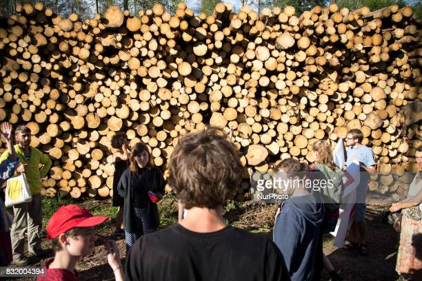 Members of quotCamp for forestquot organization during event near illegal logging near Bialowieza on August 15 2017