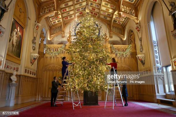 Members of Royal Collection Trust staff apply the finishing touches to a 20ft Nordmann fir tree in St George's Hall in Windsor Castle Berkshire
