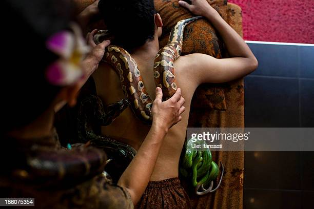 Members of staff demonstrate a form of massage using pythons at Bali Heritage Reflexology and Spa on October 27 2013 in Jakarta Indonesia The snake...