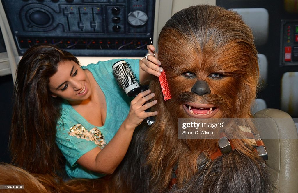 Members of staff makes last minute touch ups of wax figure Chewbacca, from Star Wars, on display at 'Star Wars At Madame Tussauds' on May 12, 2015 in London, England.