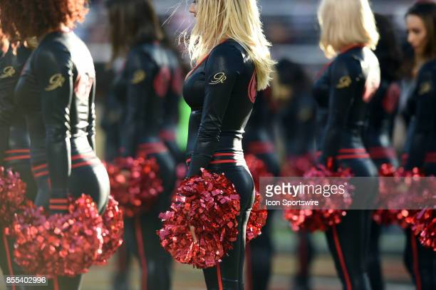 Members of the 49ers Gold Rush cheerleaders during an NFL game between the Los Angeles Rams and the San Francisco 49ers on September 21 2017 at...