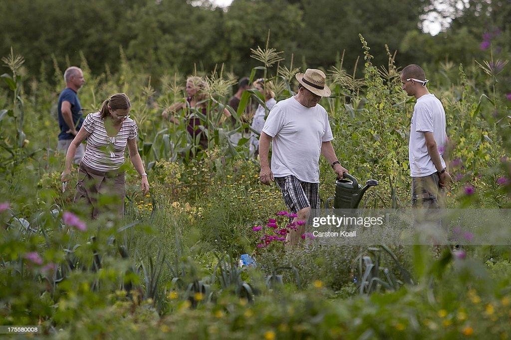 Urban Gardening Growing In Popularity : News Photo