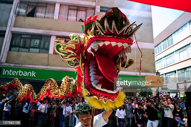 Members of the Chinese community in Peru carry a dragon during the celebrations of the Chinese New Year in Lima on January 22 2012 AFP PHOTO/ERNESTO...