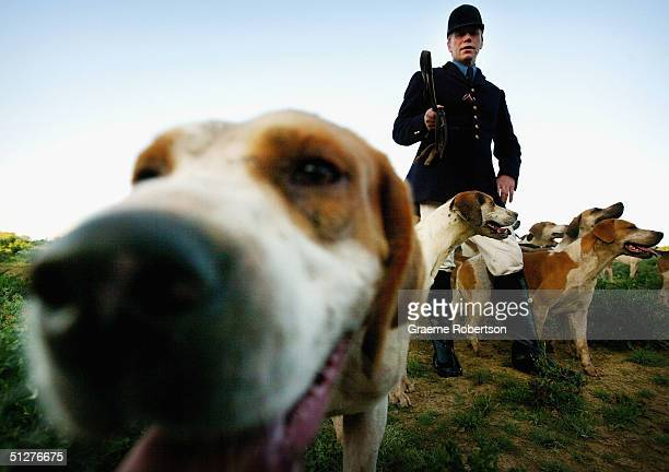 Members of the Countryside Alliance take part in a hunt on September 9, 2004 held in the heart of English Countryside, Tismans Common, England. The...
