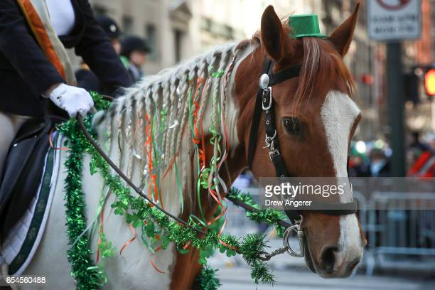 Members of the County Carlow Association ride horses as they march along 5th Avenue during the annual St Patrick's Day parade March 17 2017 in New...
