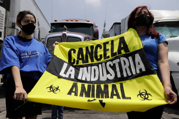 MEX: Activists Demonstrate Against The Meat Industry In Mexico