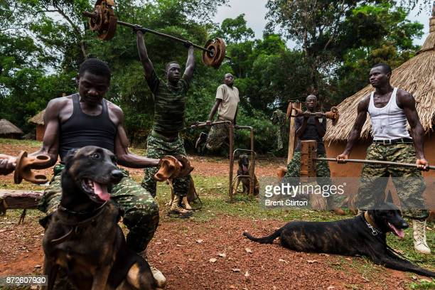 Members of the dog tracking team of the Ugandan Army African Union force at their home made gym at the UPDF encampment in Obo Central African...