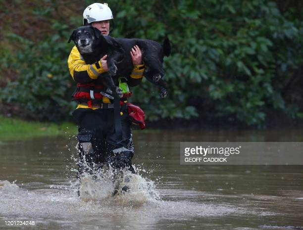Members of the emergency services evacuate residents and their dogs from flooded houses by resucue boat after the River Taff burst its banks in...