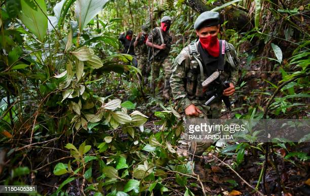Members of the Ernesto Che Guevara front belonging to the National Liberation Army guerrillas patrols the jungle in Choco department in Colombia on...
