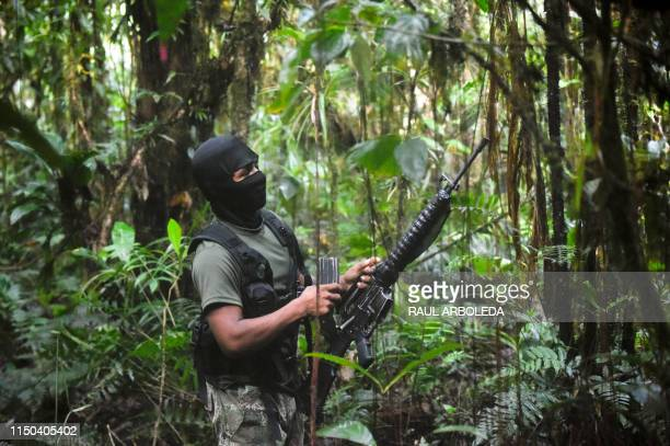Members of the Ernesto Che Guevara front, belonging to the National Liberation Army guerrillas, shoot during a training in the jungle, in Choco...