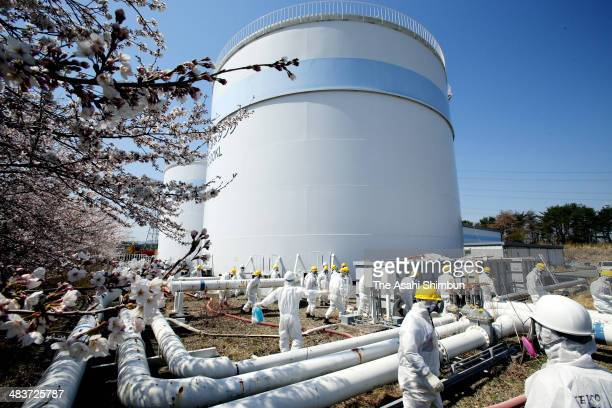 Members of the Fukushima prefectural government's expert committee responsible for monitoring the reactor decommissioning effort at the plant,...