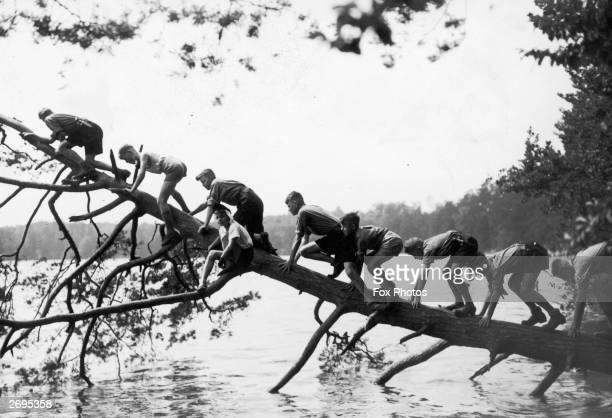 Members of the Hitler Youth Movement climb trees in a Berlin Park