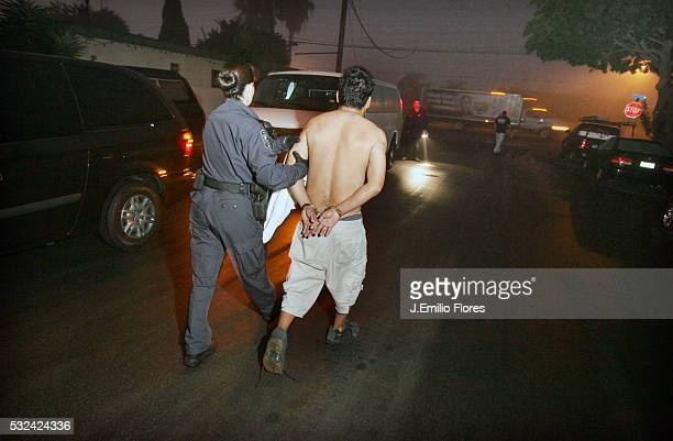 Members of the immigrant removal task force of the Immigration and Customs Enforcement during an early morning raid to arrest and deport immigrants...