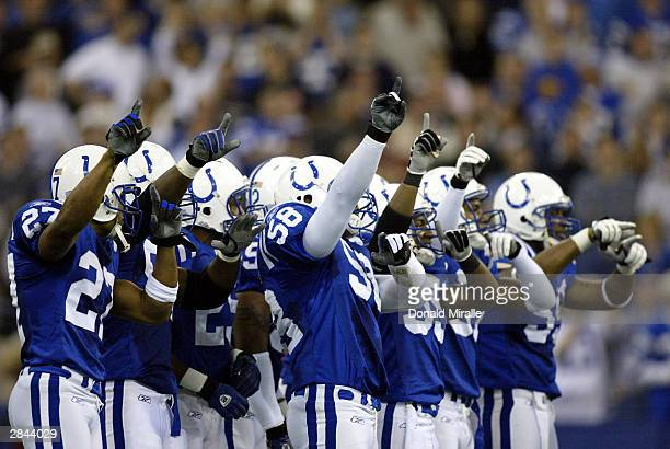 Members of the Indianapolis Colts special team celebrate before a kickoff during the AFC playoff game against the Denver Broncos on January 4 2004 at...