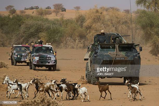 Members of the Malian Special Force and French soldiers take part in the Operation Gustav on April 9 105 kms north of the northeastern Malian city of...