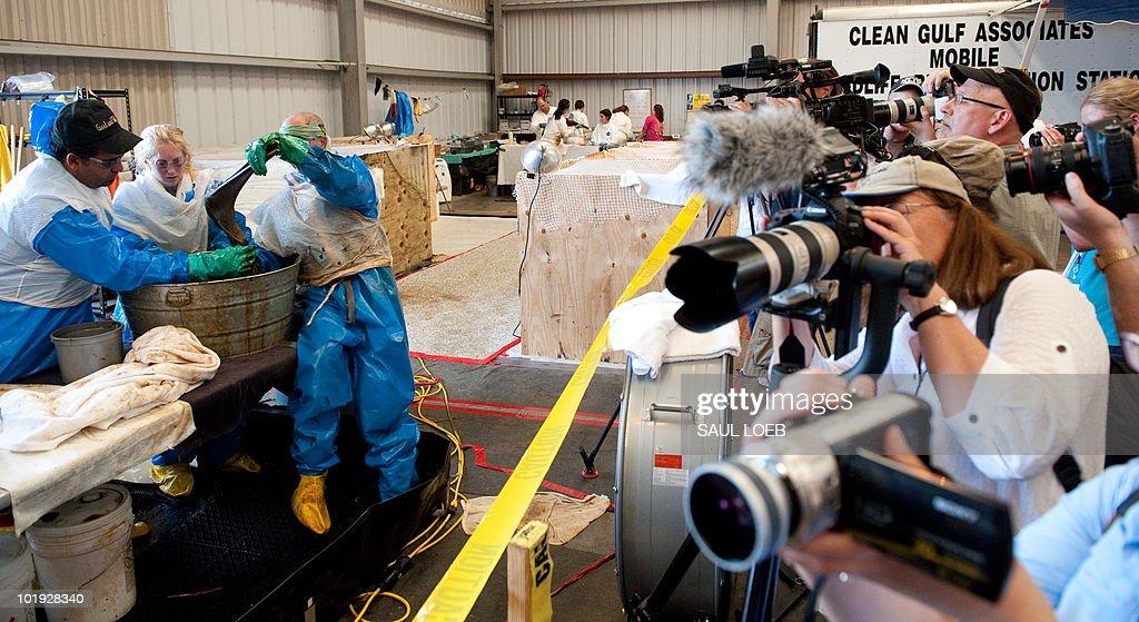 Members of the media photograph voluntee : News Photo