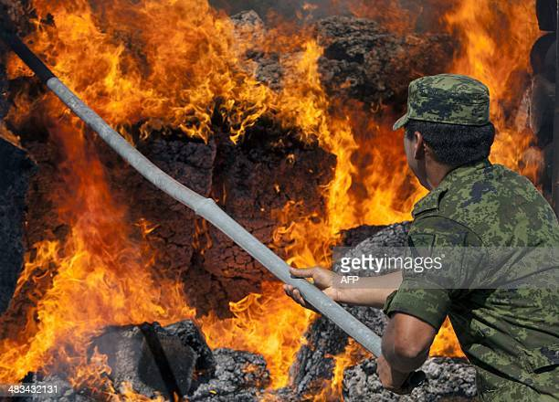 Members of the Mexican Army incinerate marijuana heroin cocaine and methamphetamine at a military base in Monterrey Nuevo Leon state on April 8 2014...