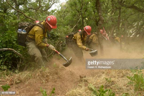 Members of the Montana Bitterroot Hotshots use hand tools and chain saws to put in a shaded fuel break and cut a hand line around a home along County...