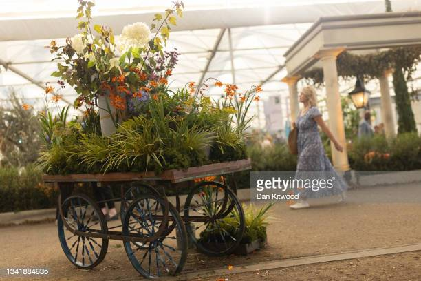 Members of the public enjoy the displays in the main pavilion at Chelsea Flower Show on September 22, 2021 in London, England. This year's RHS...