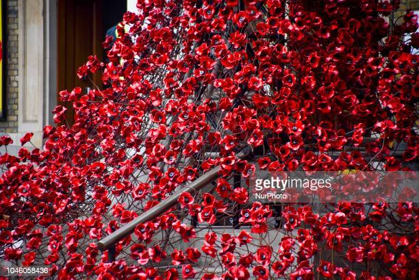 Members of the public look at an installation entitled 'Weeping Window' which comprises of several thousand handmade ceramic poppies cascading down...