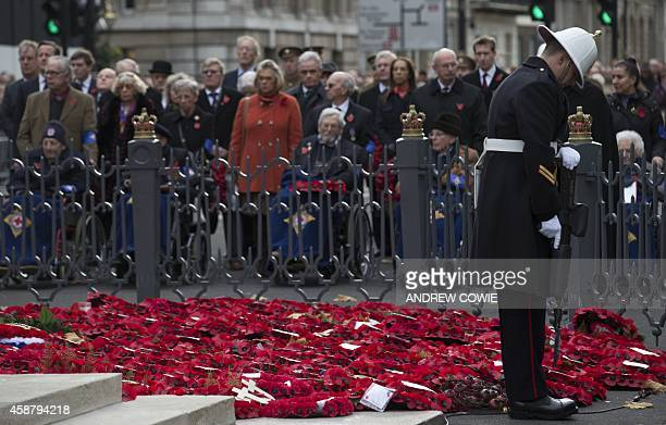 Members of the public look on as a soldier of The Royal Marines stands guard by wreaths of poppies at the Cenotaph during The Western Front...