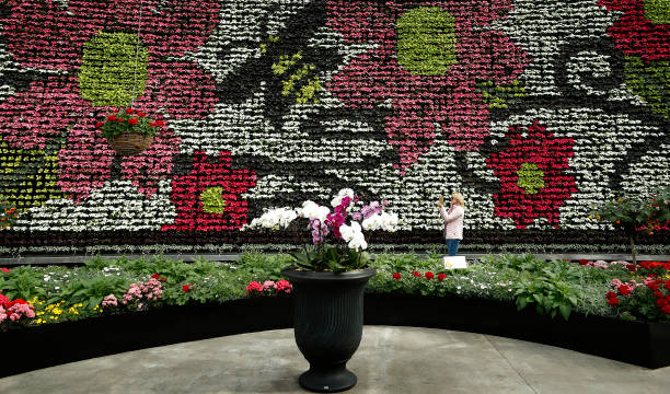 AUS: Royal Botanic Garden Sydney Opens New Floral Display InBloom at The Calyx