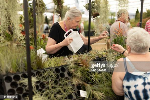 Members of the public purchases a bromeliad in the main pavilion at Chelsea Flower Show on September 22, 2021 in London, England. This year's RHS...