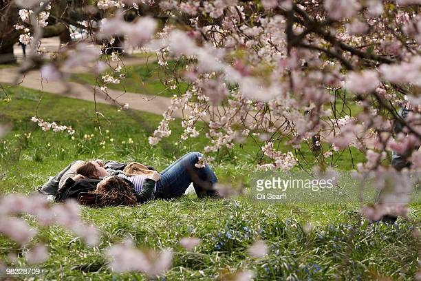 Members of the public snooze next to a tree in full blossom in warm spring weather in St James's Park on April 8 2010 in London England Temperatures...