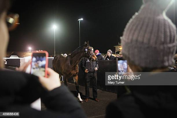 Members of the public take photos with their mobile phones as Lot Number 1103 waits by the parade ring with his stud hand at Tattersalls Auctioneers...