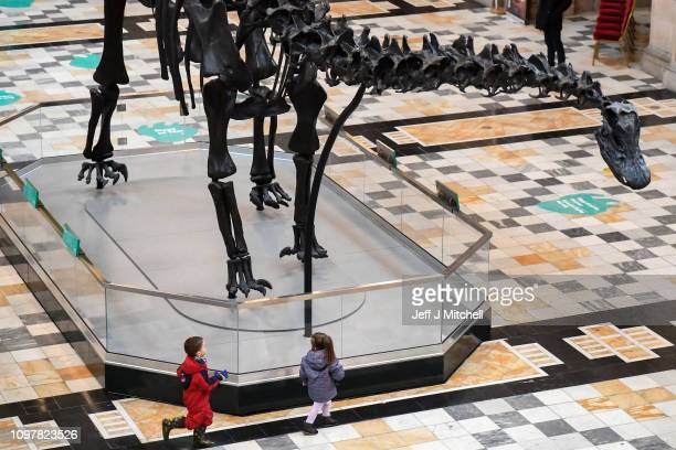 Members of the public view Dippy the dinosaur as it went on show to the public at Kelvingrove Art Gallery and Museum on January 22 2019 in Glasgow...