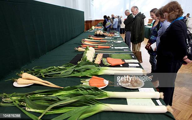 Members of the public view the first prize in the 'Collection of 4 kinds of Vegetable' category won by Mrs S Plumb at the Royal Horticultural...