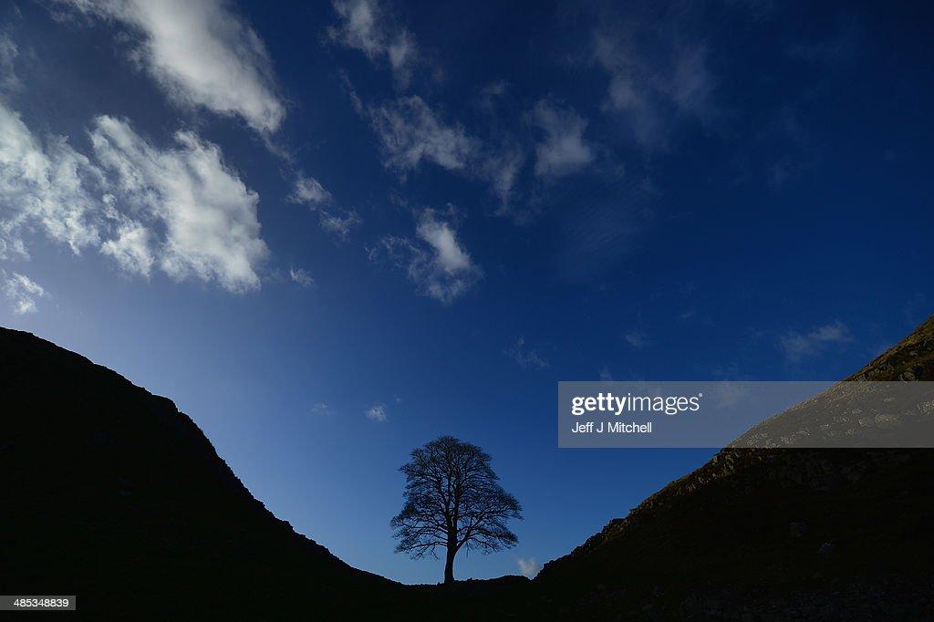 Hadrian's Wall Marking The Boundary Between England And Scotland : News Photo