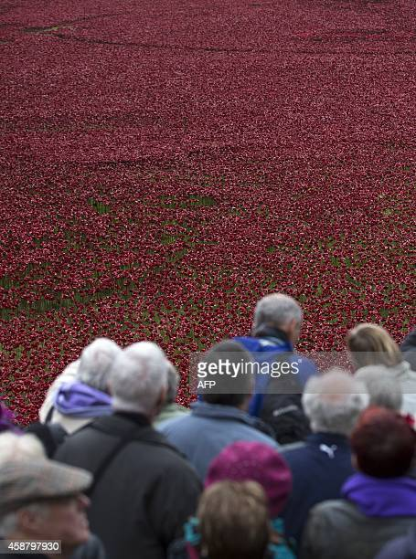 """Members of the public walk around to view the """"Blood Swept Lands and Seas of Red"""" installation of ceramic poppies by artist Paul Cummins and theatre..."""