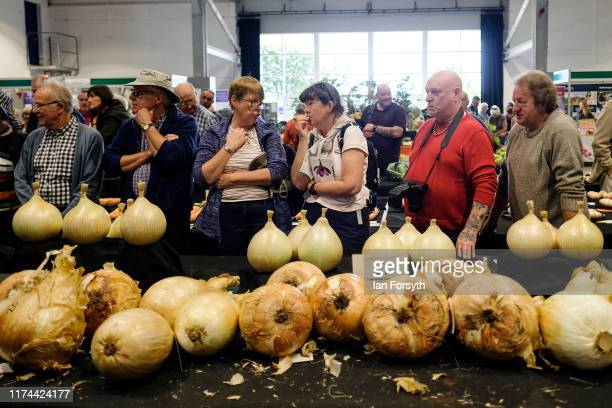 Members of the public watch as onions are weighed during judging in the giant vegetable competition at the Harrogate Autumn Flower Show on September...