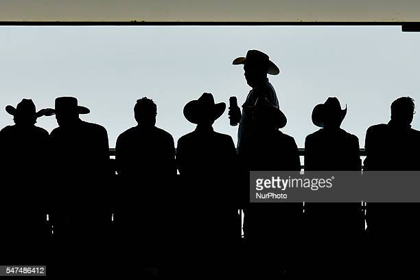 Members of the public watching the thursday's rodeo at the Calgary Stampede 2016. On Thursday, 14 July 2016, in Calgary, Canada.