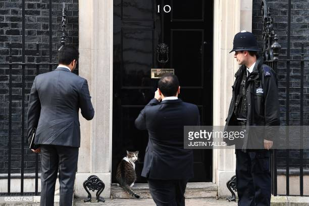 Members of the Qatar's Prime Minister Abdullah bin Nasser bin Khalifa Al Thani's delegation take pictures of 'Larry' the Downing Street cat as they...